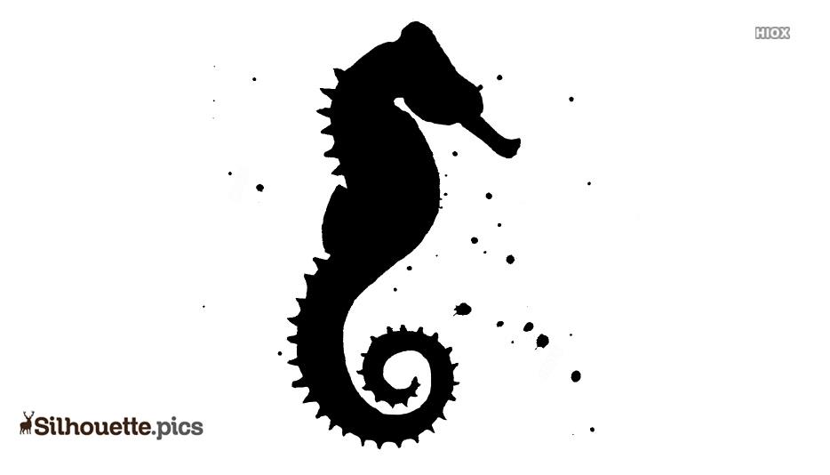 Sea Horse Silhouette Picture