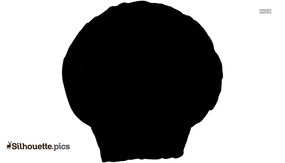 Seashell Drawings Silhouette Image