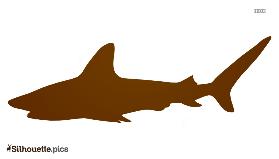 Shark Realistic Silhouette