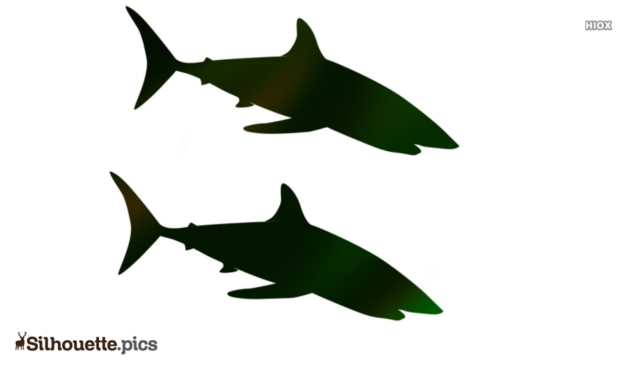 Shark Vector Silhouette Image