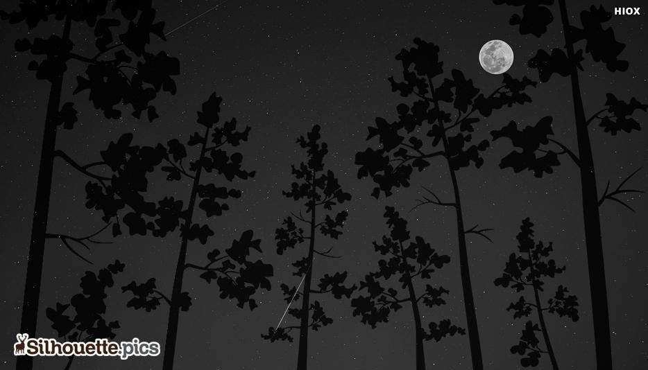 Silhouette Night Sky