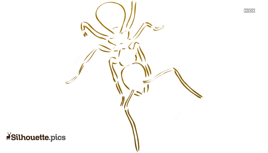 Cartoon Ant Silhouette Images, Pictures