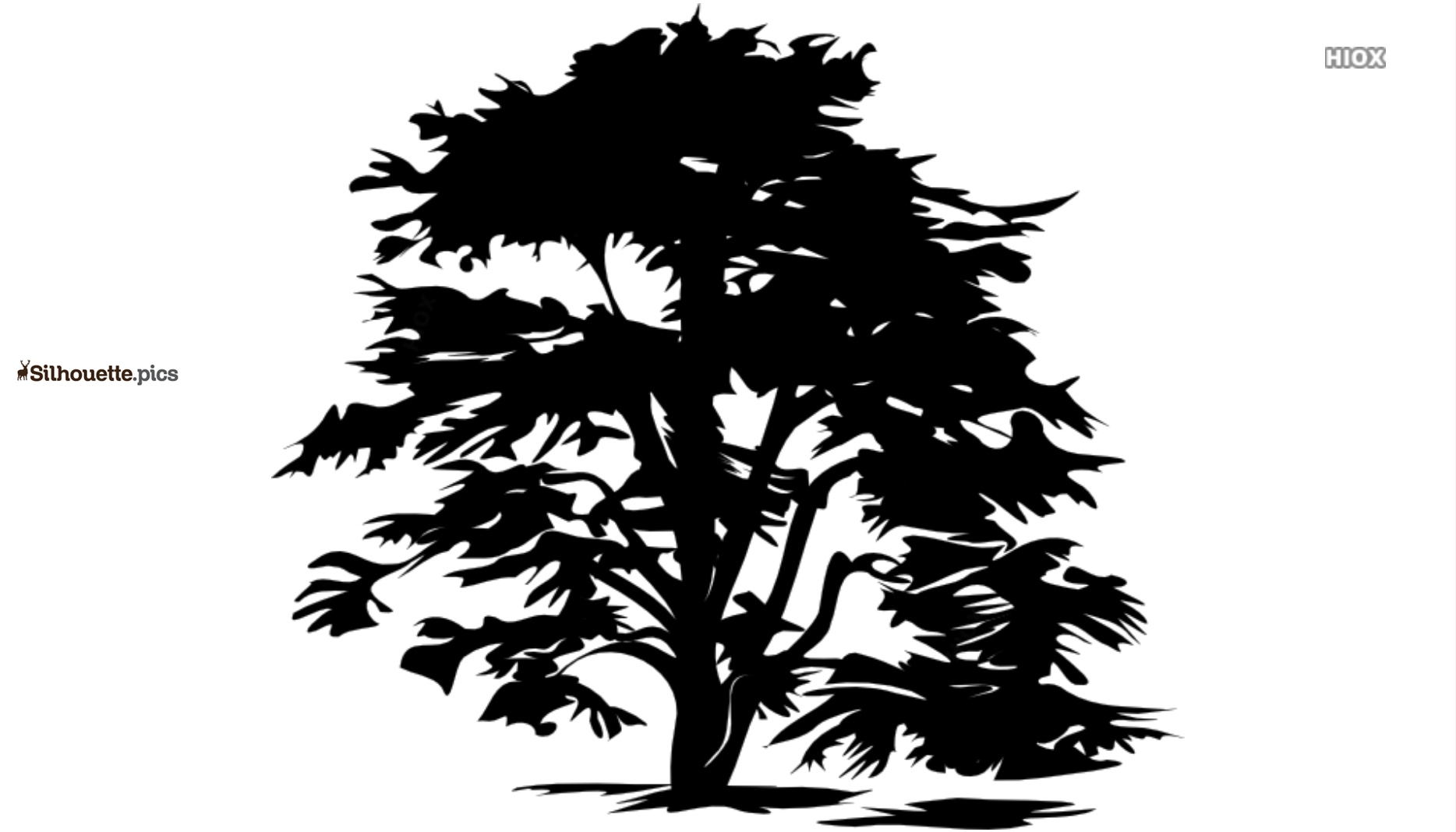 Simple Tree Icon Silhouette Background