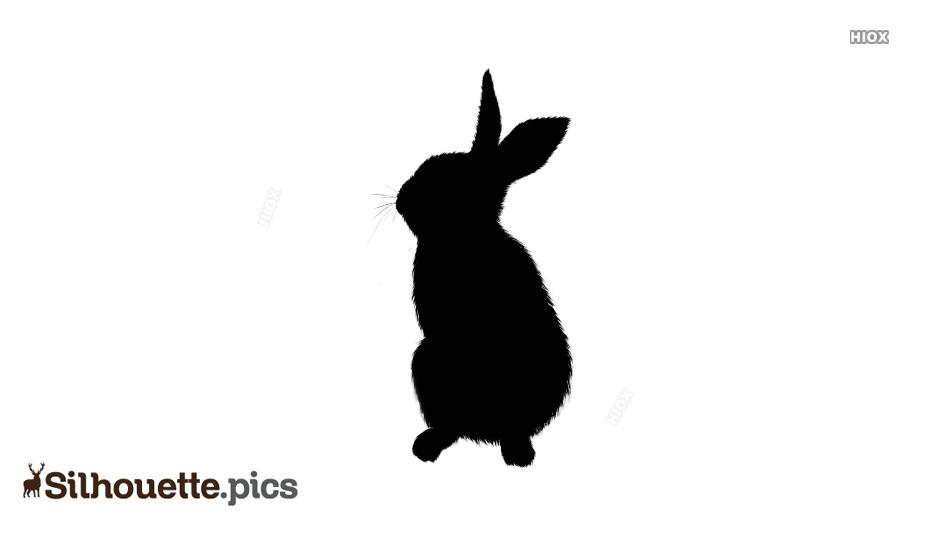 Sitting Rabbit Silhouette Vector Image