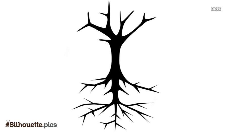 Skeleton Tree Silhouette Picture