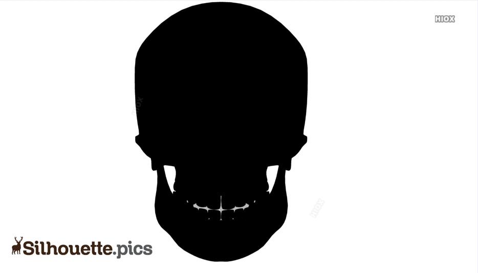 Skull Silhouette Images