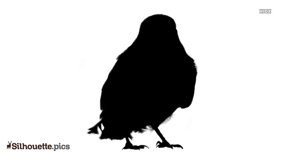 Small Bird Silhouette Clipart