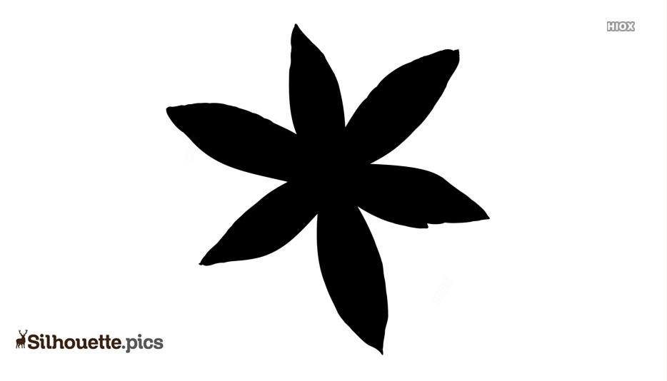 Star Of Bethlehem Flower Silhouette Background Image
