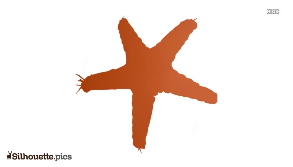 Starfish Starfish Silhouette