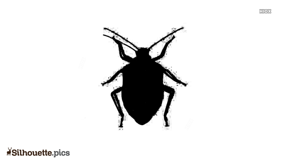 Stink Bug Beetle Silhouette Art
