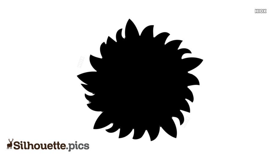 Sunflower Illustration Silhouette