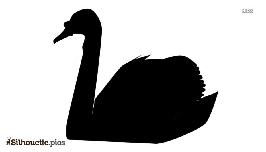 Swan Art Silhouette Image And Vector