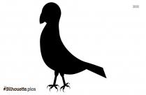 Bird Cartoon Picture Silhouette