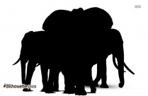 Elephant Silhouette Picture