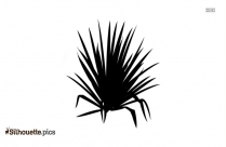Yucca Plant Silhouette Clipart