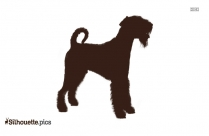 Clumber Spaniel Black And White Silhouette