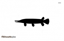 Alligator Gar Fish Silhouette