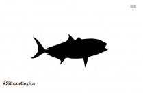 Almaco Jack Fish Silhouette Vector And Graphics