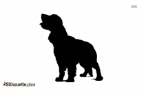 American Water Spaniel Dog Breed Vector Silhouette
