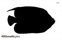 Tortoise Silhouette Image