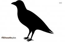 Cardinal Bird Feather Silhouette Clipart