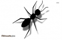 Cartoon Ant Silhouette