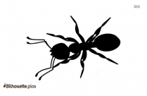 Ant Drawing Silhouette