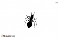 Big Cartoon Ant Silhouette Vector And Graphics
