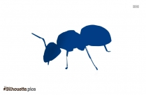 Ant Drawing Silhouette Vector And Graphics