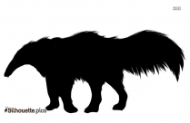 Anteater Silhouette Vector Image