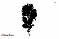 Antique Shabby Chic Pink Rose Flower Silhouette
