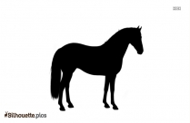 Horse Drawing Silhouette Image Vector