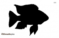 Tribal Fish Tattoos Silhouette