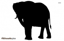 Asian Elephant Silhouette Vector And Graphics