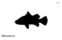 Asian Fish Silhouette