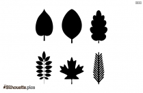 Green Cartoon Leaf Silhouette Vector Image