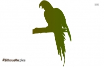 Free Parrot Silhouette