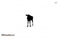 Calf Standing Silhouette