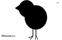 Chick Drawings Silhouette Vector And Graphics