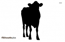 Funny Cows Cartoon Animal Silhouette