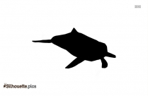 Narwhal Illustration Silhouette