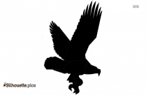 Falcon Feathers Silhouette Free Vector Art