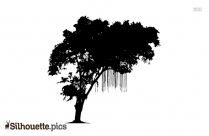 Silhouette Of Tree Icon