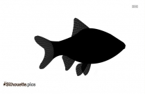 Vector Image Of Narwhal Fish Silhouette