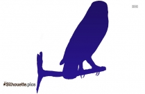 Barn Owl Clipart Silhouette