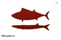 Barracuda Clipart Silhouette