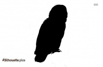 Cartoon Owl Under Umbrella Silhouette Image