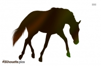 Bay Horse Silhouette Image