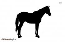 Bay Horse Silhouette Free Vector Art
