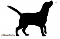 American English Coonhound Vector Silhouette